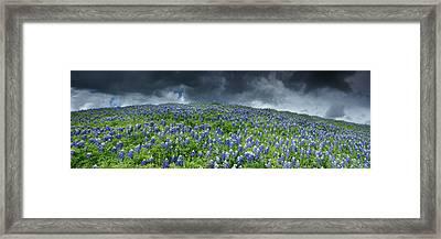 Stormy Blues - Craigbill.com - Open Edition Framed Print by Craig Bill