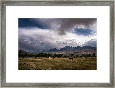 Stormy Day In Big Pine Framed Print by Cat Connor
