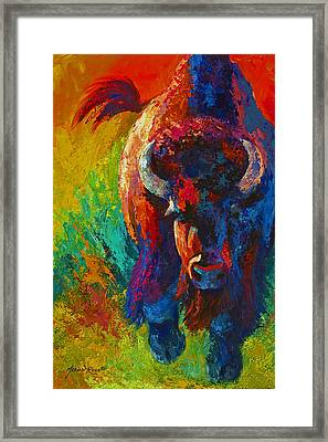 Straight Forward Introduction - Bison Framed Print by Marion Rose