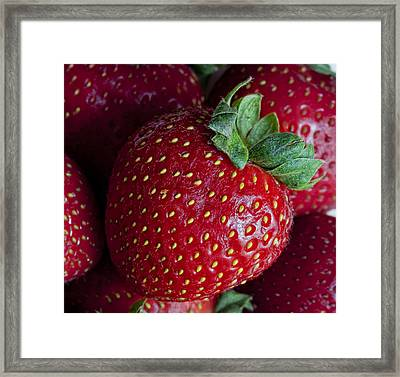 Strawberry 3 Framed Print by Robert Ullmann