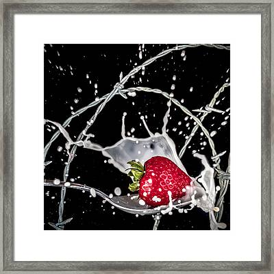 Strawberry Extreme Sports Framed Print by TC Morgan