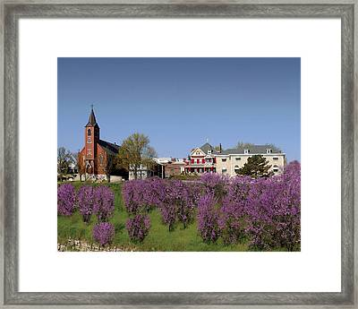 Strawberry Hill Framed Print by Don Wolf