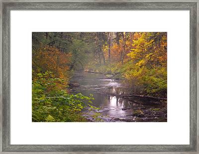 Stream Of The Fall Framed Print by Dale Stillman