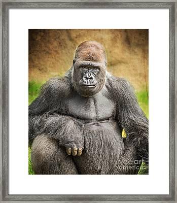 Strength Framed Print by Jamie Pham