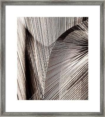 String Art #3 Framed Print by Aileen Mozug