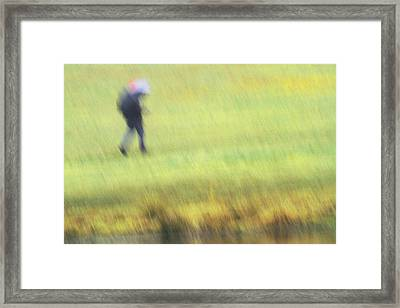 Strolling In The Rain Framed Print by Karol Livote