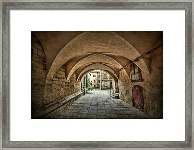 Stuck In The Middle Framed Print by Evelina Kremsdorf
