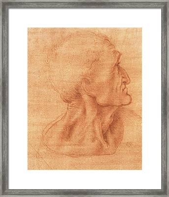 Study For The Last Supper, Judas Framed Print by Leonardo da Vinci