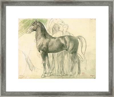 Study Of A Horse With Figures Framed Print by Edgar Degas
