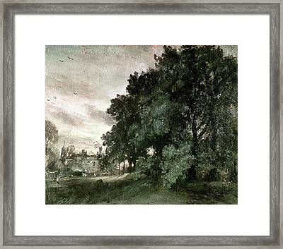 Study Of Trees Framed Print by John Constable