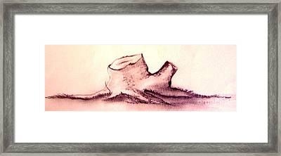 Stump Framed Print by Randy Edwards