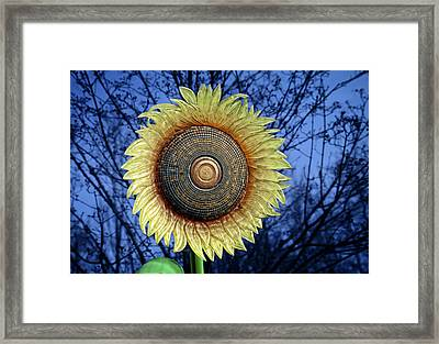 Stylized Sunflower Framed Print by Tom Mc Nemar