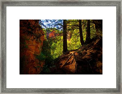 Subway Forest Framed Print by Chad Dutson