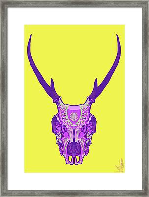 Sugar Deer Framed Print by Nelson Dedos Garcia