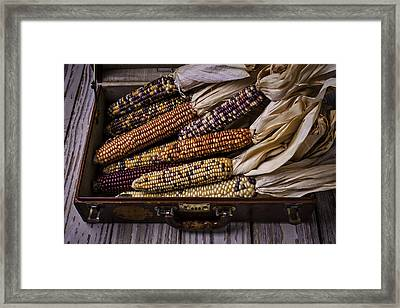 Suitcase Full Of Indian Corn Framed Print by Garry Gay