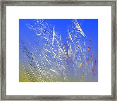 Summer Breeze Framed Print by David Lane