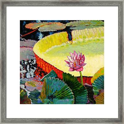 Summer Colors On The Pond Framed Print by John Lautermilch