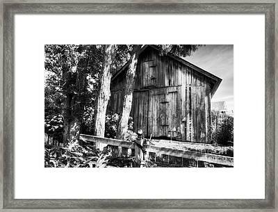 Summer Country Barn Bw Framed Print by Mel Steinhauer