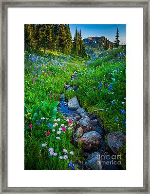 Summer Creek Framed Print by Inge Johnsson
