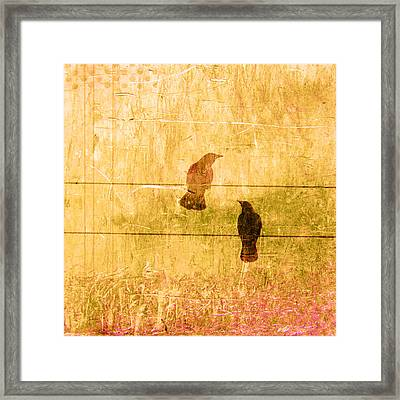 Summer Crows Framed Print by Carol Leigh