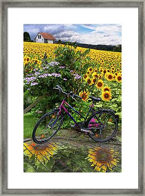 Summer Cycling Framed Print by Debra and Dave Vanderlaan