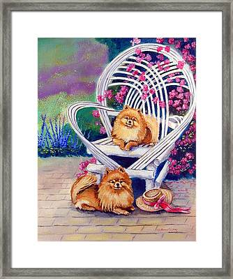 Summer Day - Pomeranian Framed Print by Lyn Cook