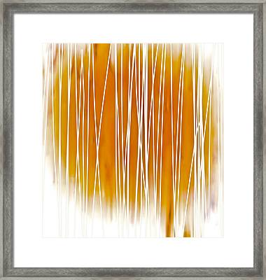 Summer Day I Framed Print by Frank Tschakert