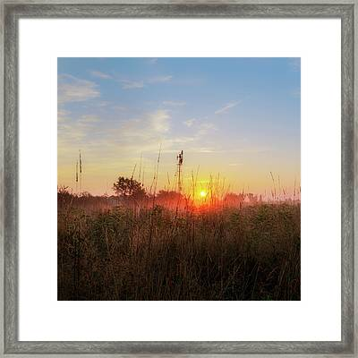 Summer Fields 2016 Square Framed Print by Bill Wakeley