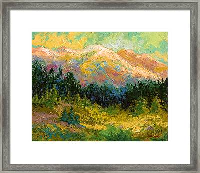 Summer High Country Framed Print by Marion Rose