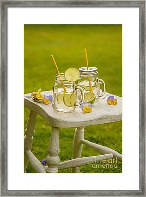 Summer Lemonade Framed Print by Amanda And Christopher Elwell