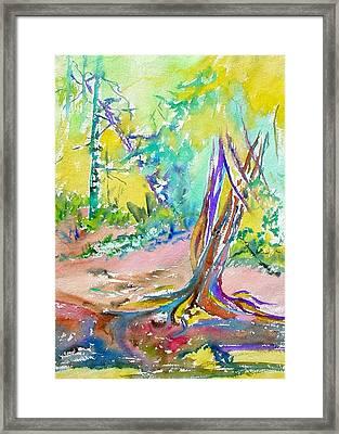 Summer Light Framed Print by Patricia Bigelow