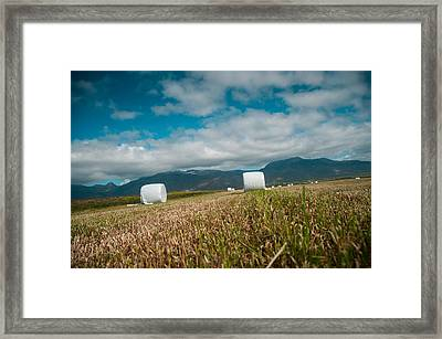 Summer Framed Print by Mirra Photography