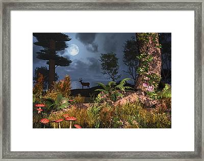 Summer Night Magic Framed Print by Mary Almond