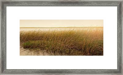 Summer On The Marsh Framed Print by Sally Simon
