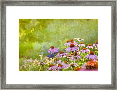 Summer Rains Framed Print by Beve Brown-Clark Photography
