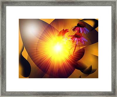 Summer Solstice II Framed Print by Patricia Motley