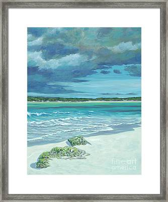 Summer Storm Framed Print by Danielle Perry