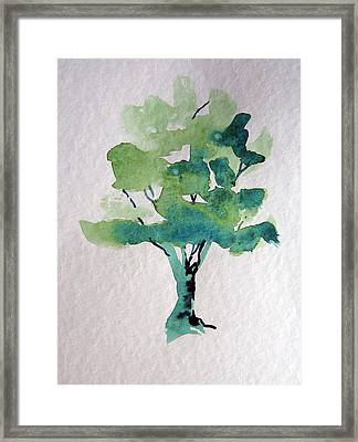Summer Tree Framed Print by Mindy Newman