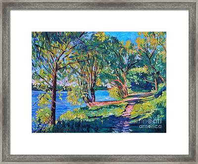Summer's Lake Framed Print by David Lloyd Glover