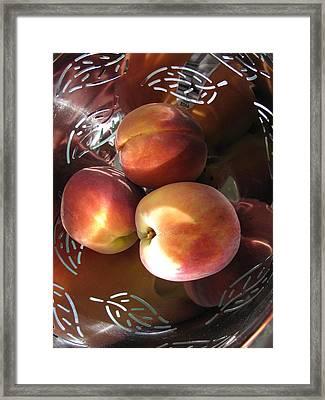 Summertime Fruit Framed Print by Lindie Racz