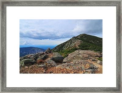 Summit Of Mount Lincoln Framed Print by Catherine Reusch  Daley