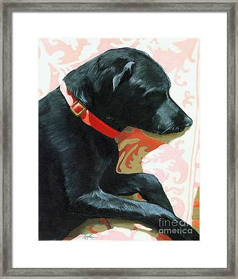 Sun Dog - Dog Portrait Oil Painting Framed Print by Linda Apple