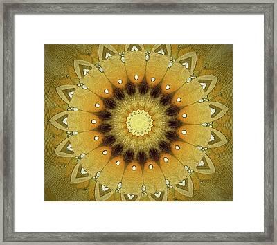 Sun Kaleidoscope Framed Print by Wim Lanclus