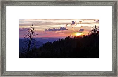 Sun Over Cedar Framed Print by Chad Dutson