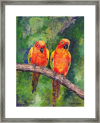Sun Parakeets Framed Print by Arline Wagner