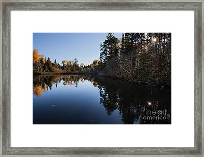 Sun Star Framed Print by Donna Crider