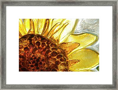 Sunburst Sunflower Framed Print by Jerry McElroy