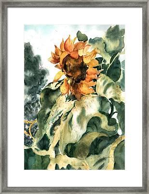 Sundancer Framed Print by Barbara Jung