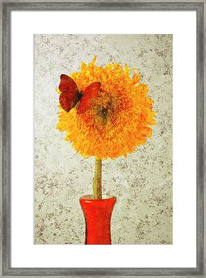 Sunflower And Red Butterfly Framed Print by Garry Gay
