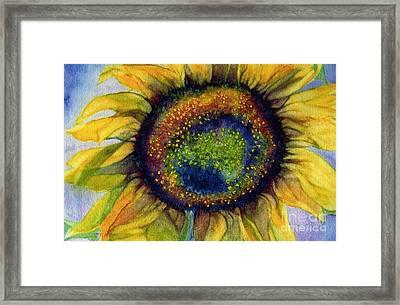 Sunflower  Emergence Framed Print by Janine Riley
